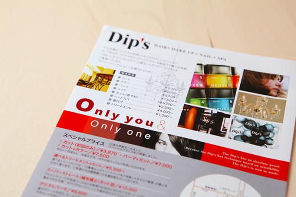 flie_dips1