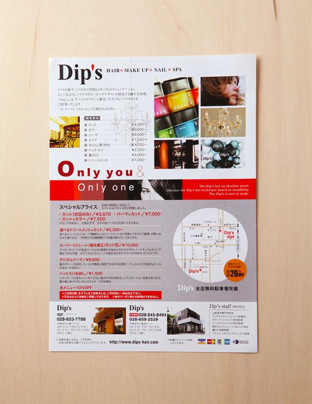 flie_dips3