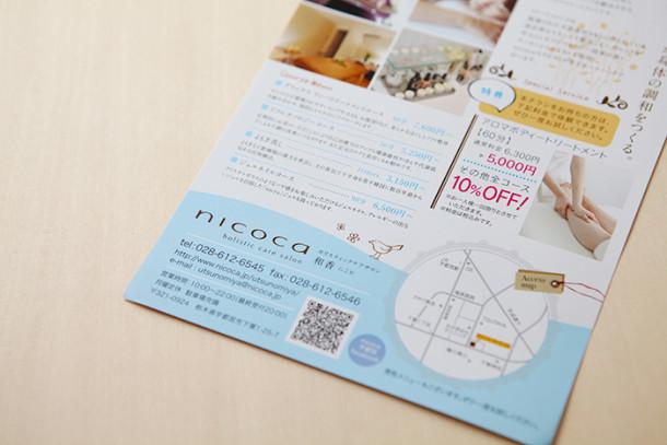 flie_nicoca3